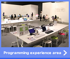 programming experience area